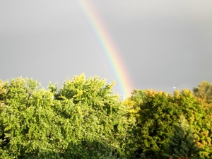 Early Morning Autumn Rainbow
